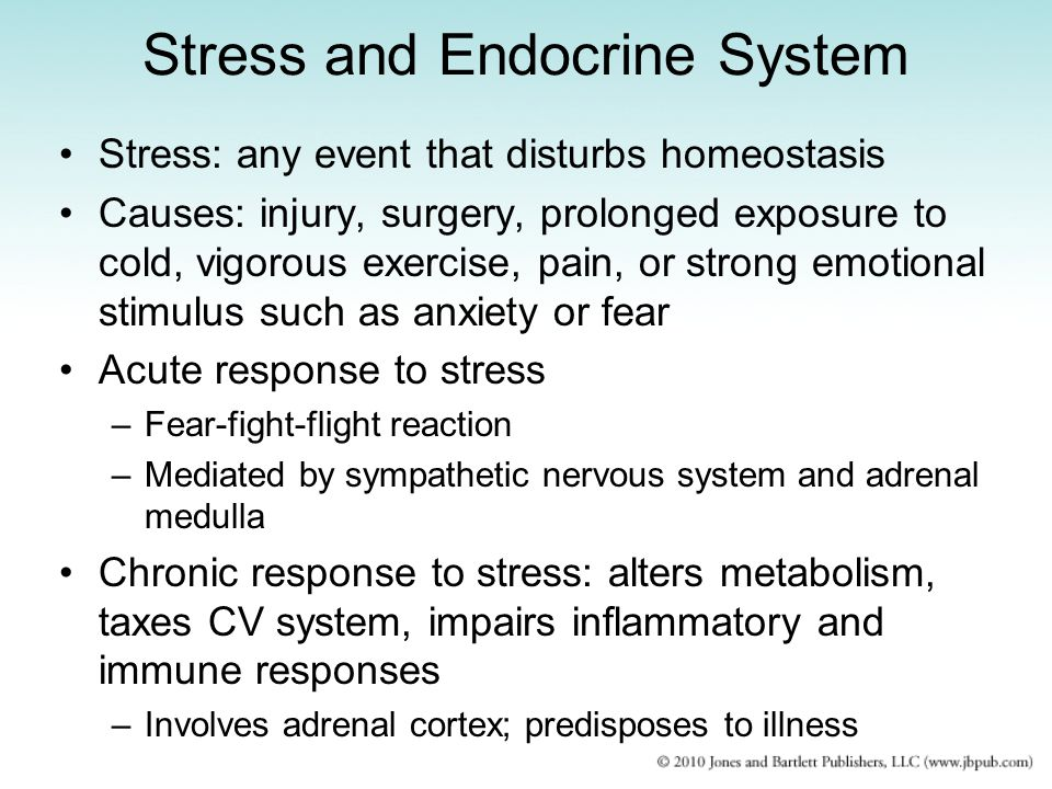 Stress and Endocrine System