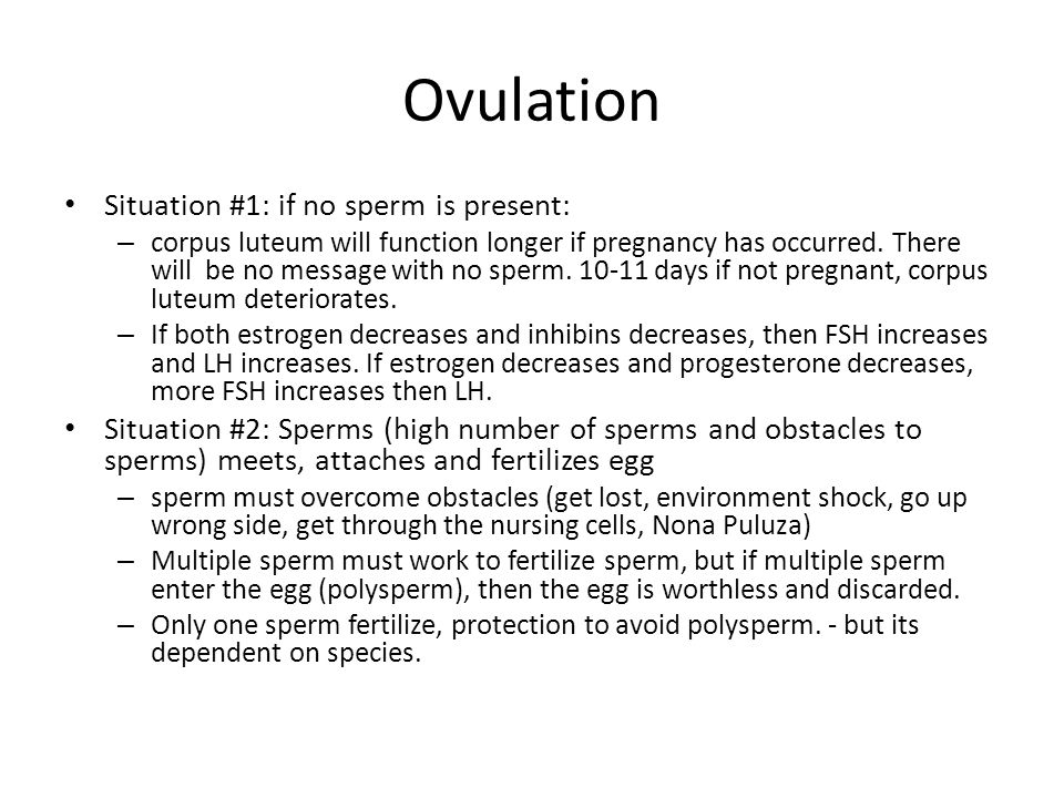 Ovulation Situation #1: if no sperm is present: