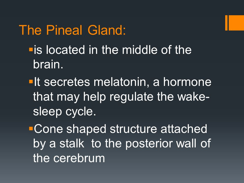 The Pineal Gland: is located in the middle of the brain.