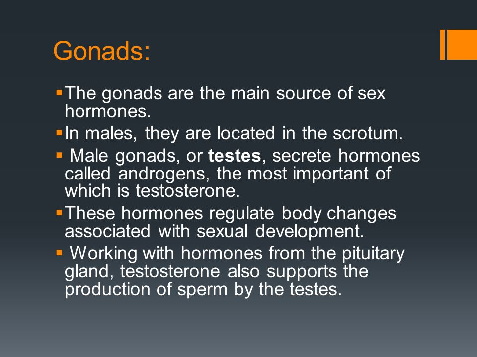 Gonads: The gonads are the main source of sex hormones.