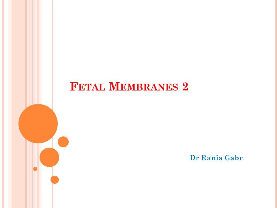 Fetal Membranes 2 Dr Rania Gabr