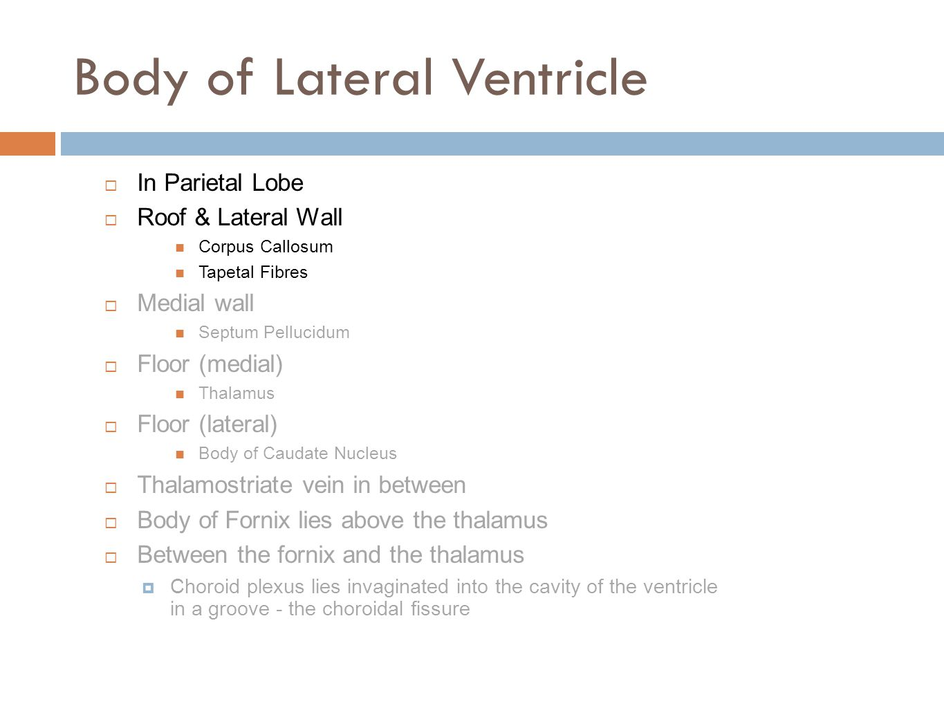 Body of Lateral Ventricle