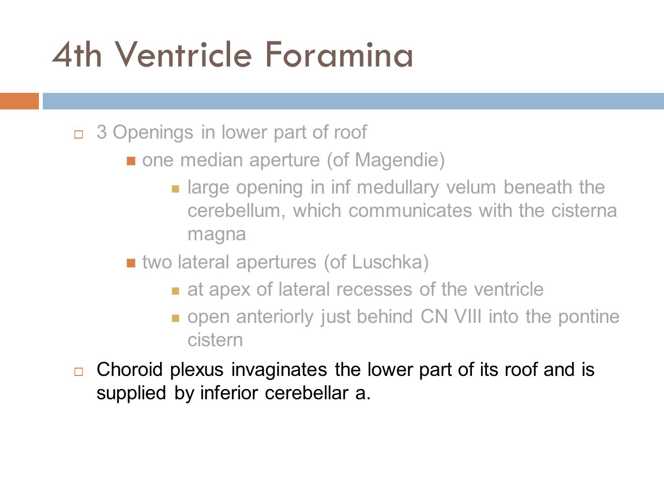 4th Ventricle Foramina 3 Openings in lower part of roof