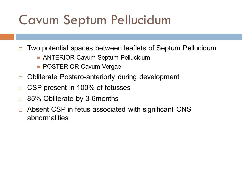 Cavum Septum Pellucidum