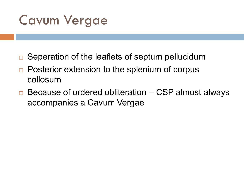 Cavum Vergae Seperation of the leaflets of septum pellucidum