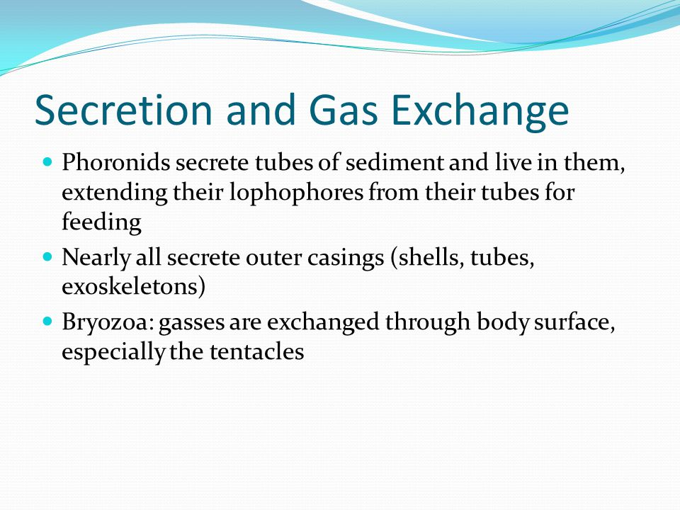 Secretion and Gas Exchange