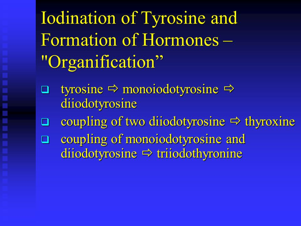 Iodination of Tyrosine and Formation of Hormones – Organification