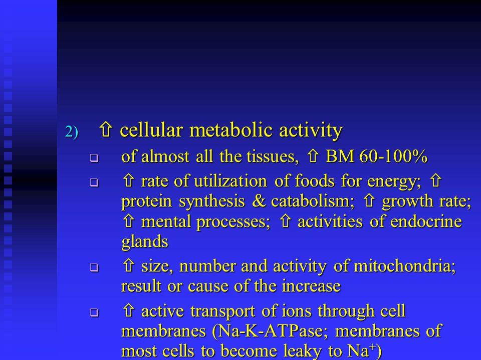  cellular metabolic activity