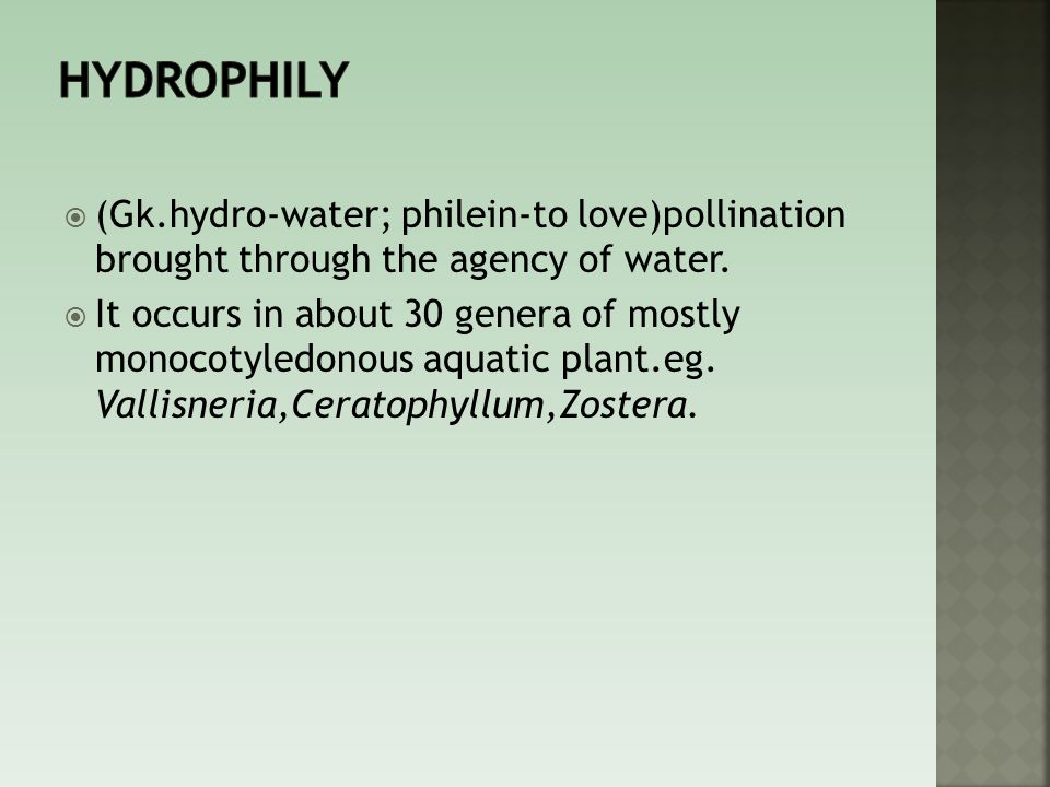 Hydrophily (Gk.hydro-water; philein-to love)pollination brought through the agency of water.