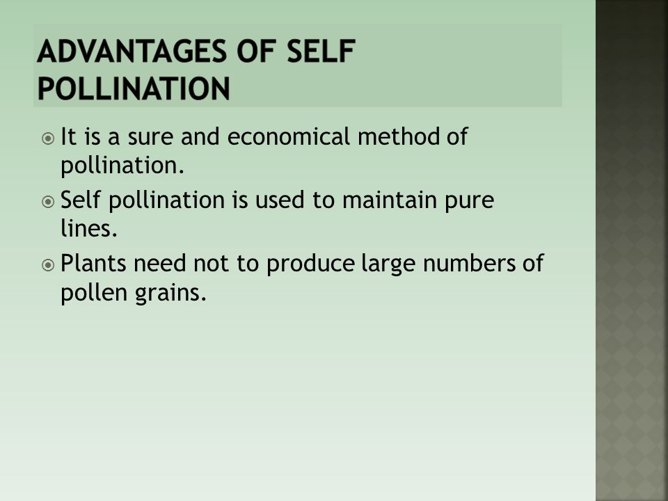 Advantages of self pollination