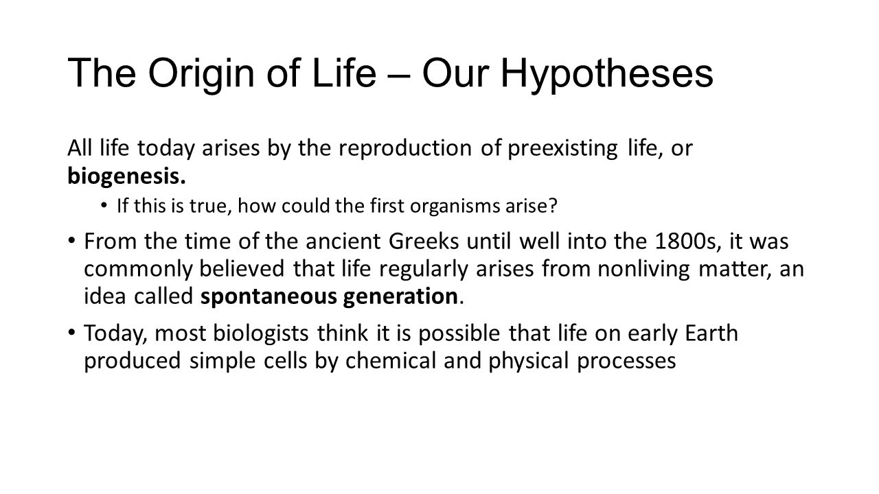 The Origin of Life – Our Hypotheses