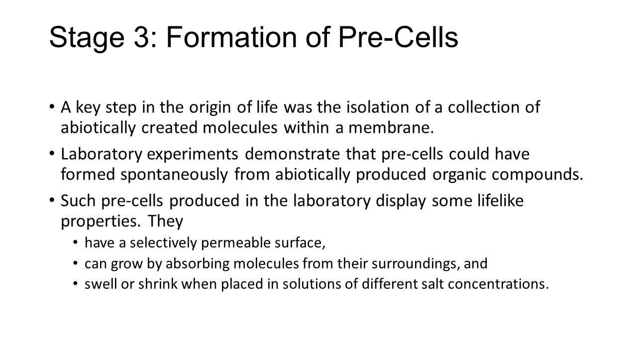 Stage 3: Formation of Pre-Cells
