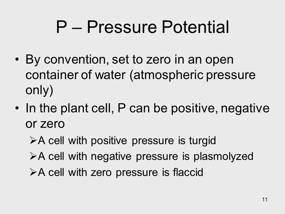P – Pressure Potential By convention, set to zero in an open container of water (atmospheric pressure only)