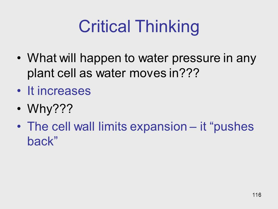Critical Thinking What will happen to water pressure in any plant cell as water moves in It increases.