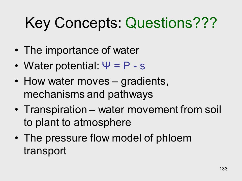 Key Concepts: Questions