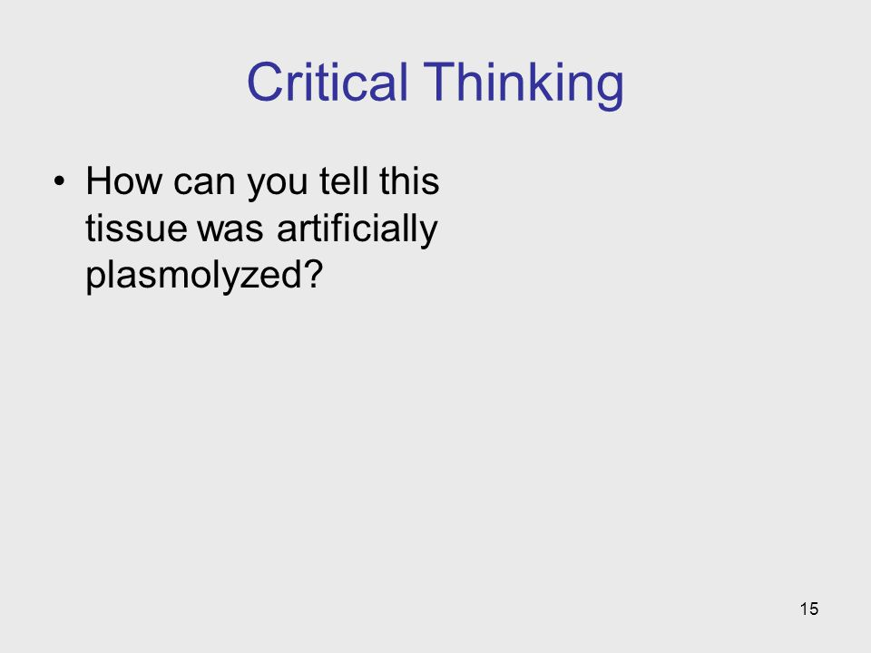 Critical Thinking How can you tell this tissue was artificially plasmolyzed