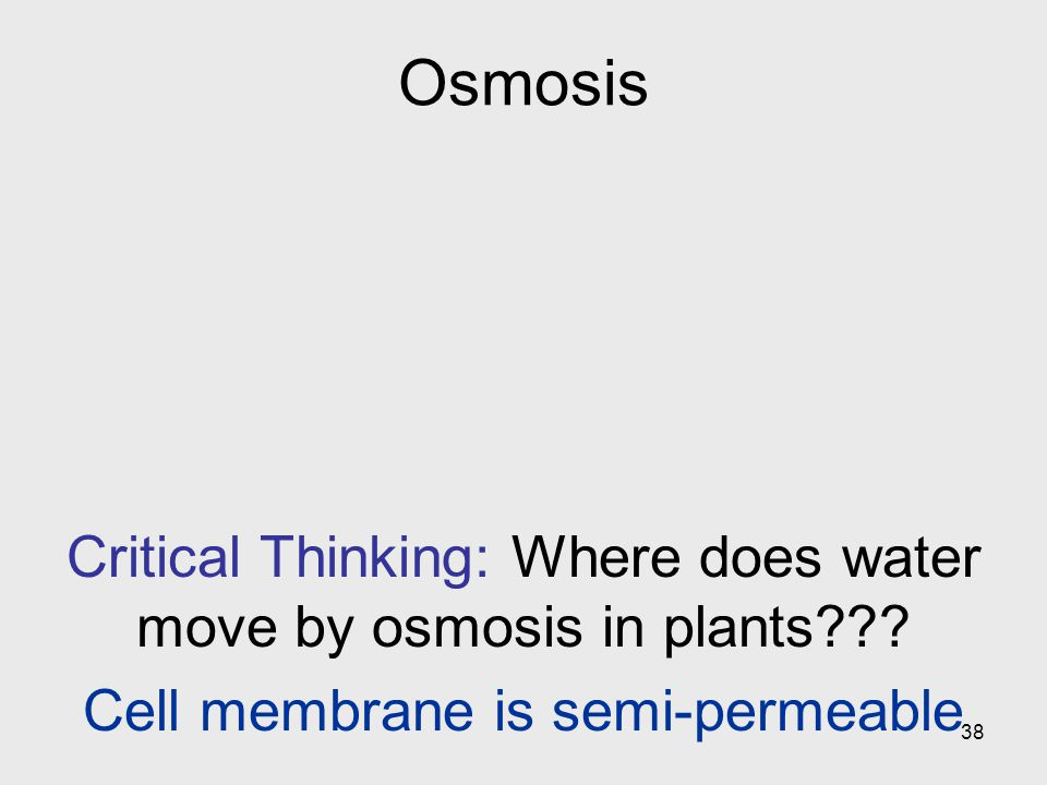 Osmosis Critical Thinking: Where does water move by osmosis in plants .