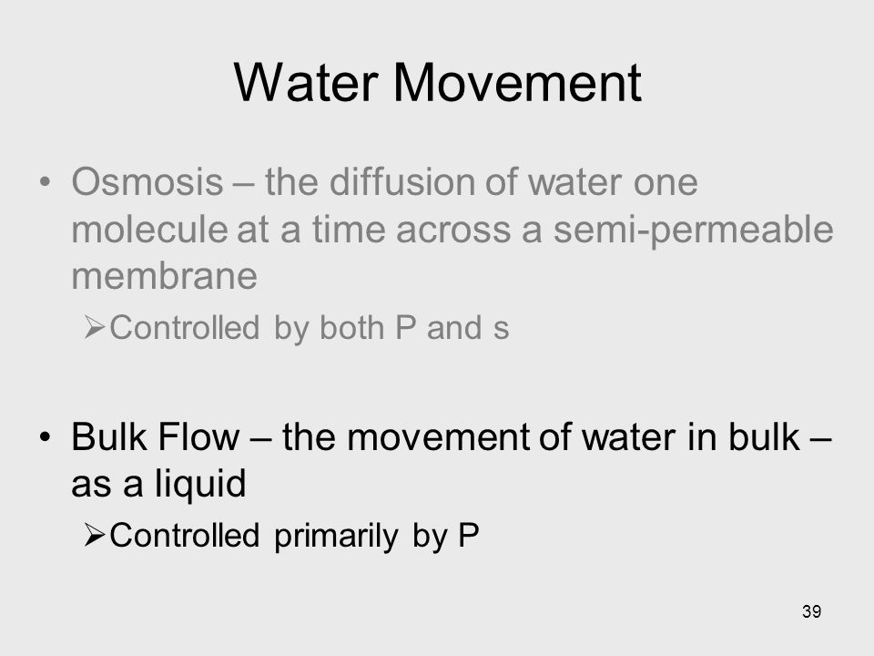 Water Movement Osmosis – the diffusion of water one molecule at a time across a semi-permeable membrane.