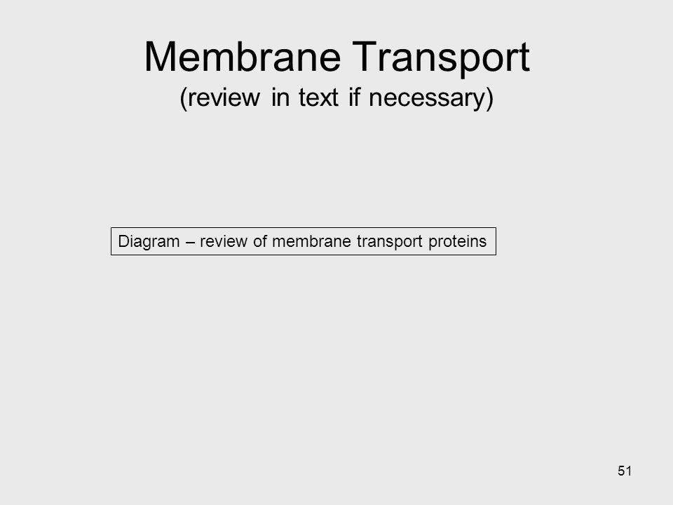 Membrane Transport (review in text if necessary)