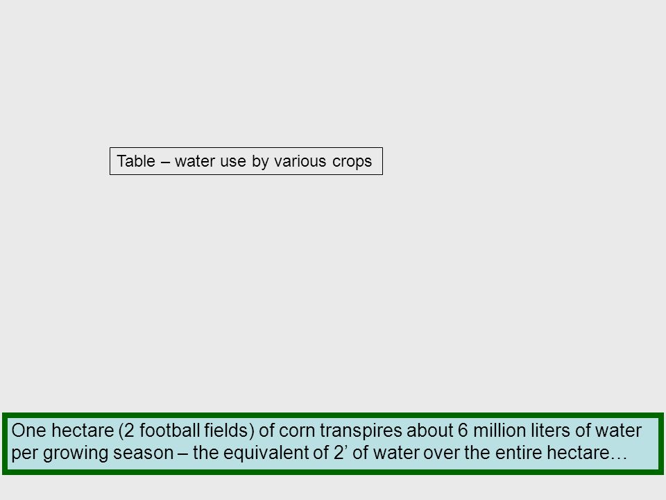 Table – water use by various crops