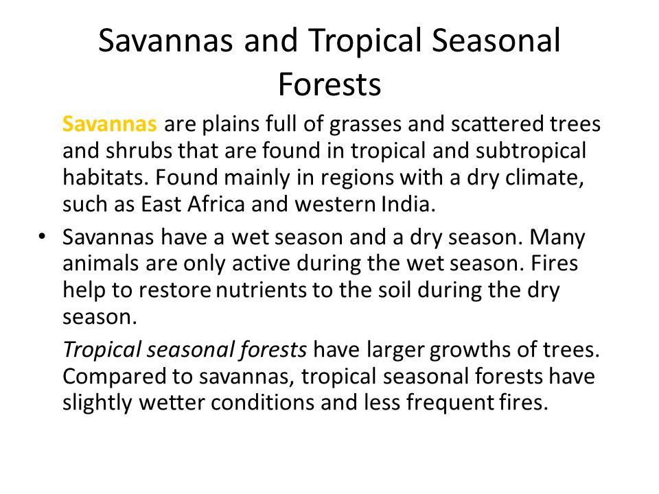 Savannas and Tropical Seasonal Forests