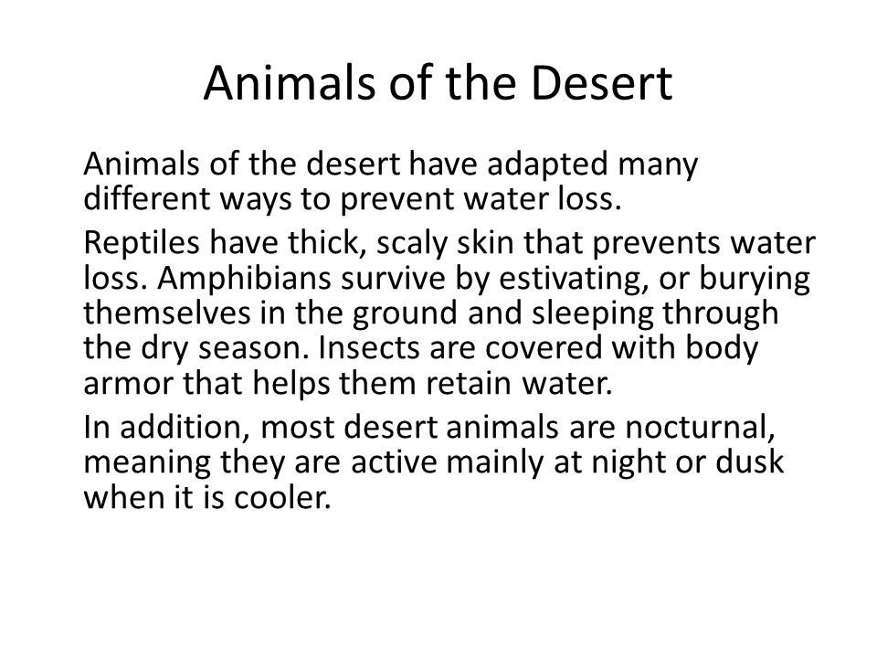 Animals of the Desert Animals of the desert have adapted many different ways to prevent water loss.