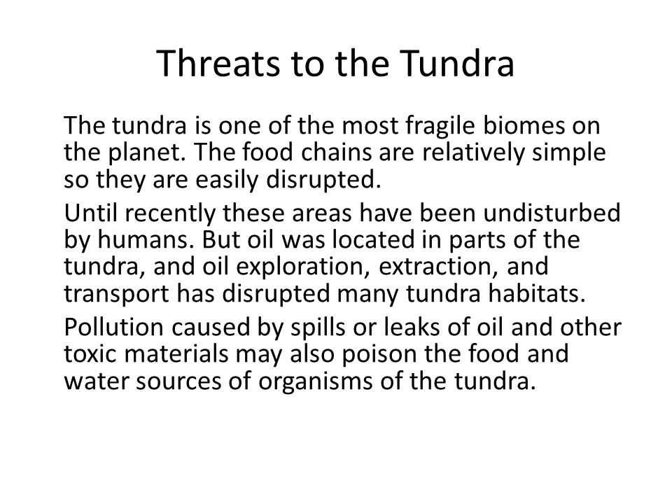 Threats to the Tundra The tundra is one of the most fragile biomes on the planet. The food chains are relatively simple so they are easily disrupted.