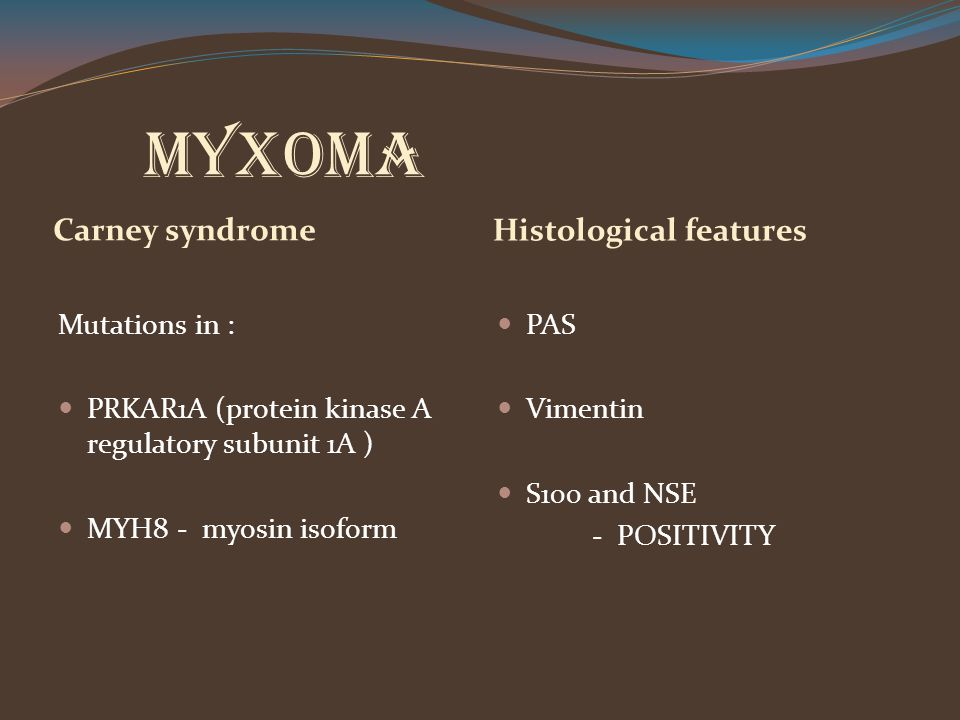 Myxoma Carney syndrome Histological features Mutations in :