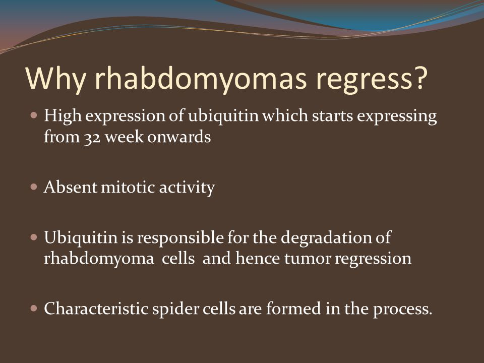 Why rhabdomyomas regress