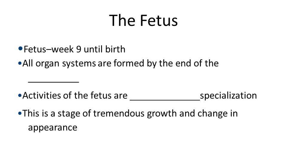 Embryo Fertilization. 1-week. conceptus. 3-week. embryo. (3 mm) 5-week embryo. (10 mm) 8-week embryo.