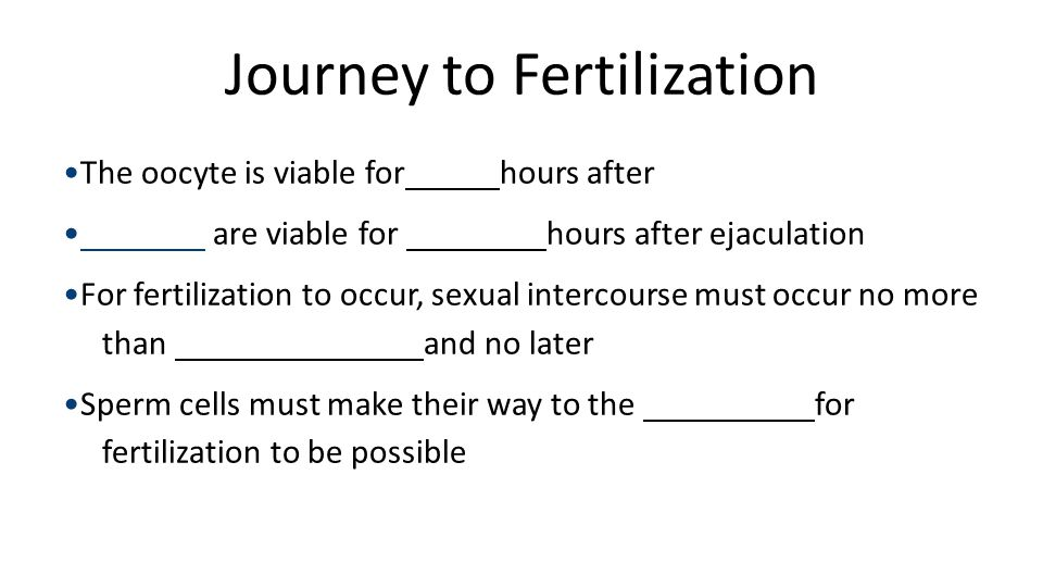Journey to fertilization