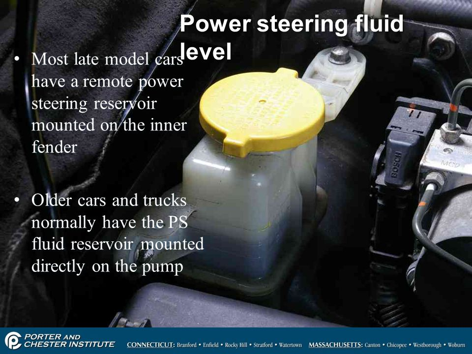 Power steering fluid level