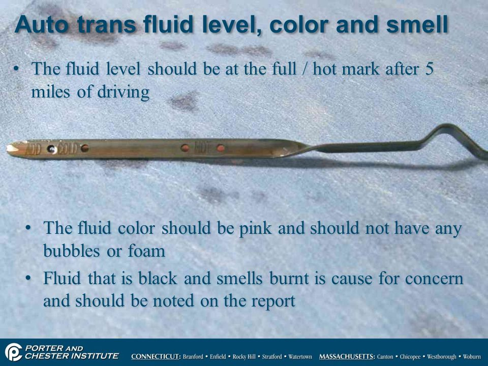 Auto trans fluid level, color and smell