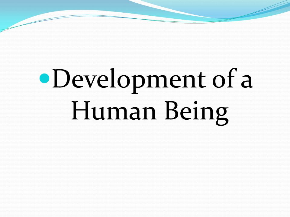 Development of a Human Being