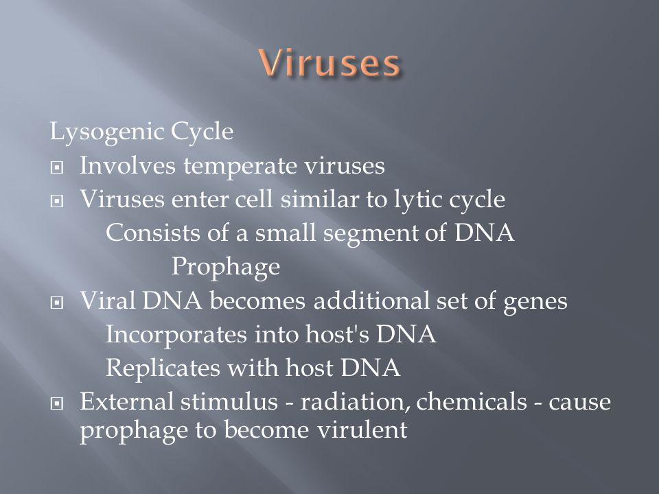 Viruses Lysogenic Cycle Involves temperate viruses