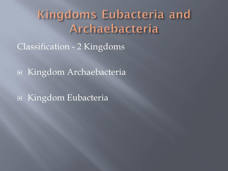 Kingdoms Eubacteria and Archaebacteria