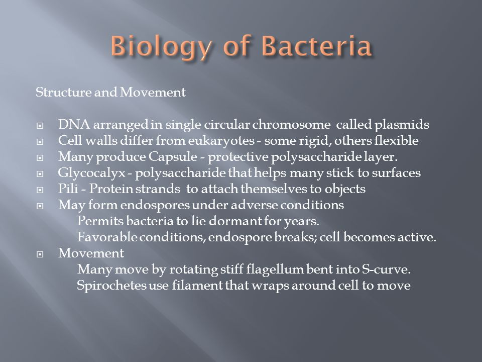 Biology of Bacteria Structure and Movement