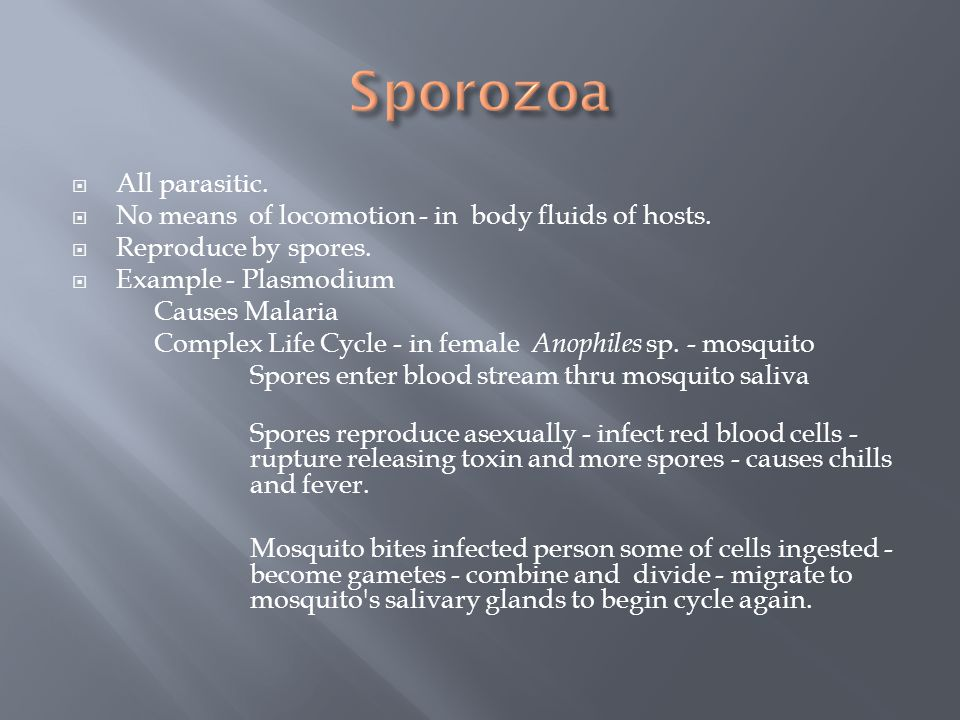 Sporozoa All parasitic.