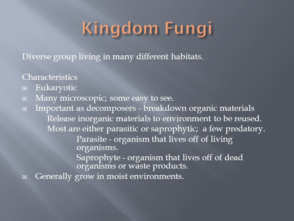 Kingdom Fungi Diverse group living in many different habitats.