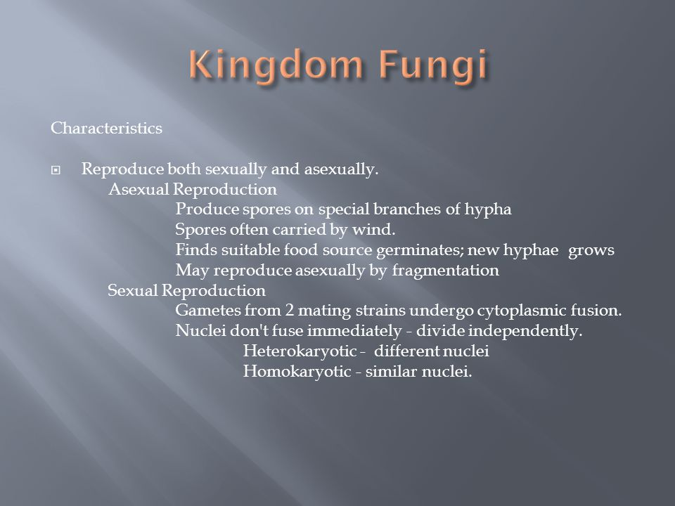 Kingdom Fungi Characteristics Reproduce both sexually and asexually.
