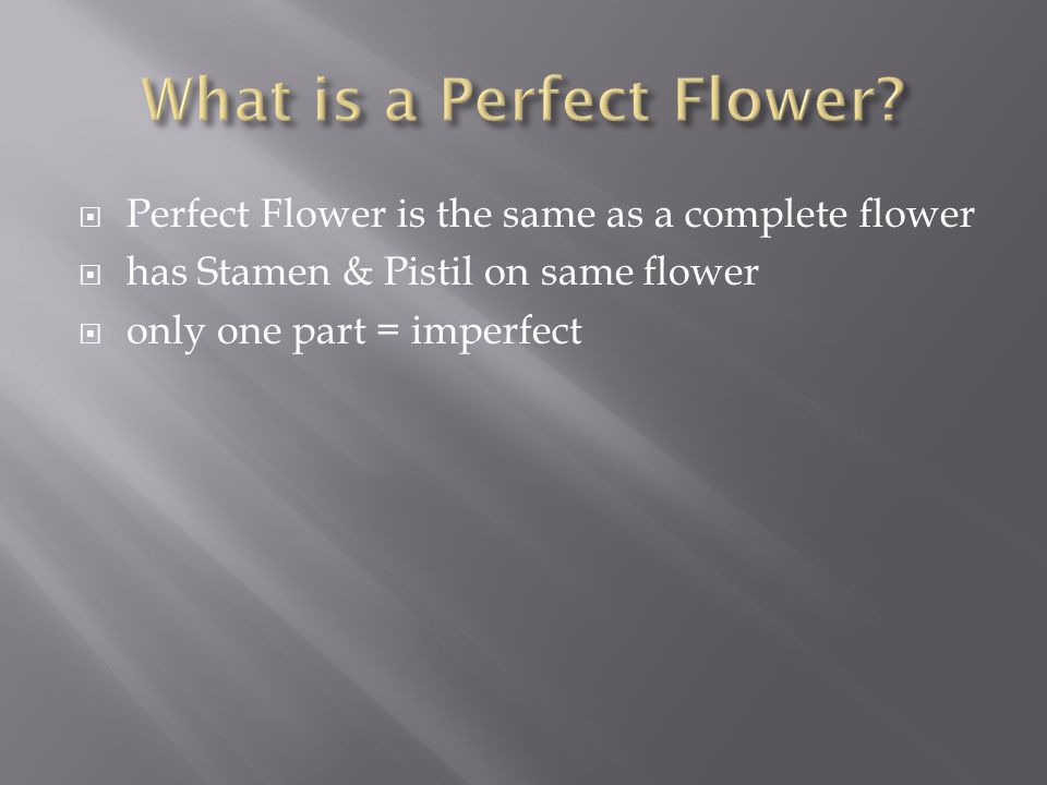 What is a Perfect Flower