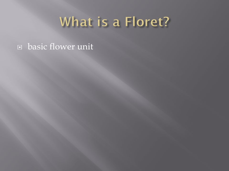 What is a Floret basic flower unit