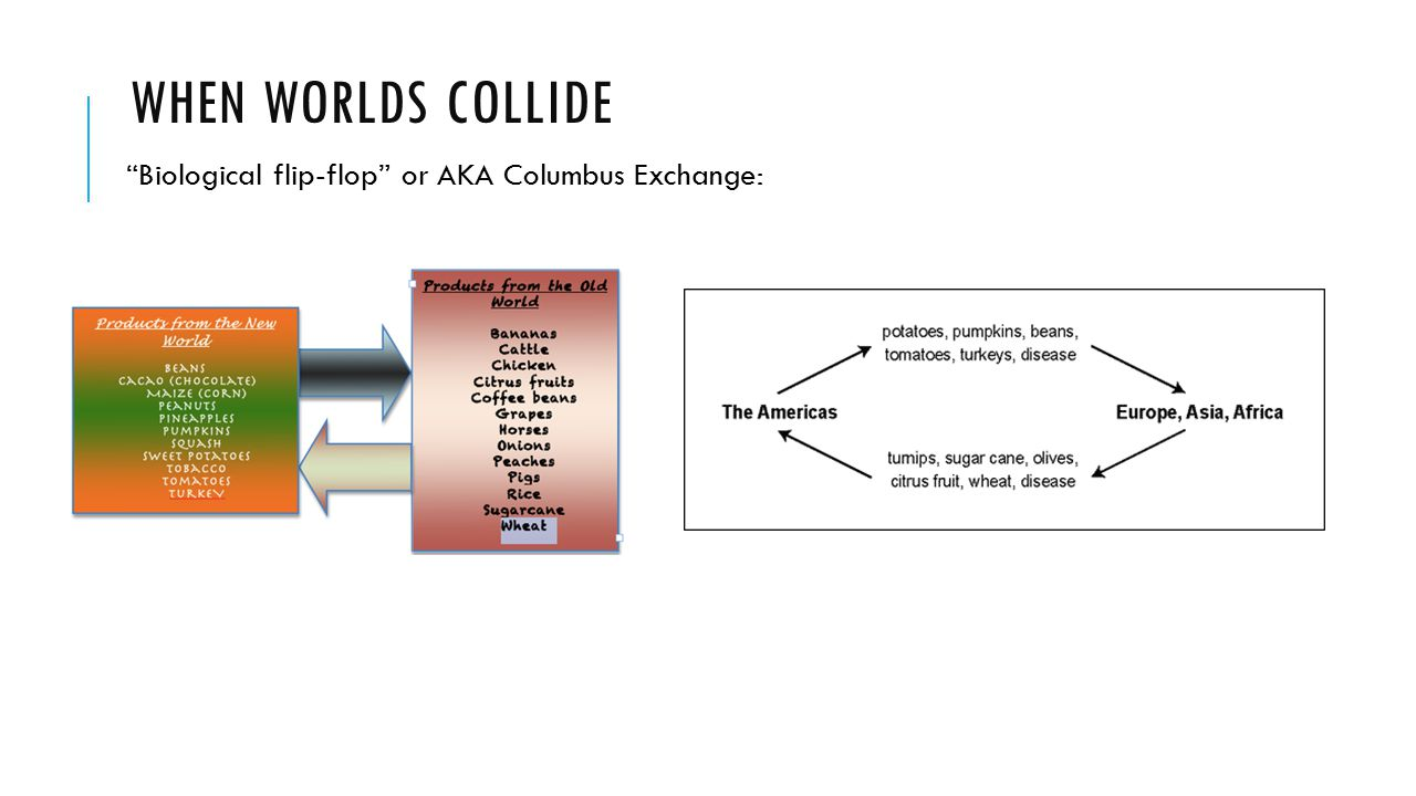 When worlds collide Biological flip-flop or AKA Columbus Exchange: