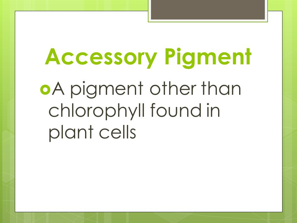 Accessory Pigment A pigment other than chlorophyll found in plant cells