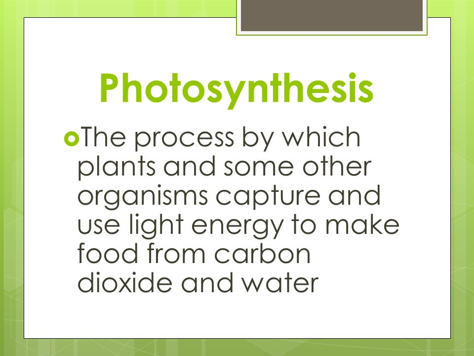 Photosynthesis The process by which plants and some other organisms capture and use light energy to make food from carbon dioxide and water.