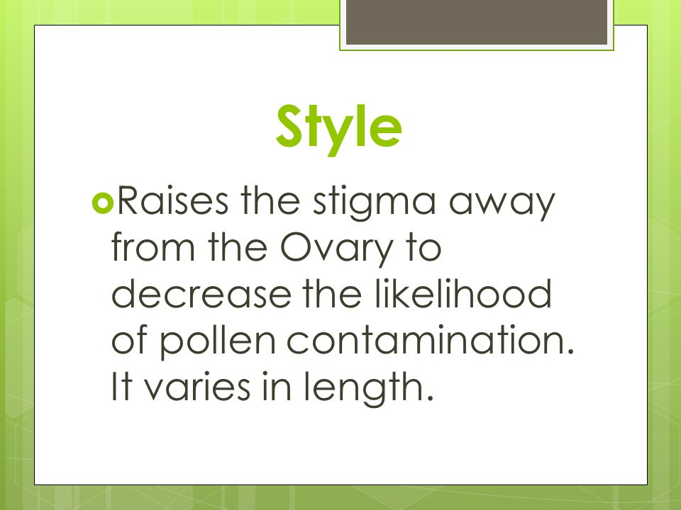 Style Raises the stigma away from the Ovary to decrease the likelihood of pollen contamination.