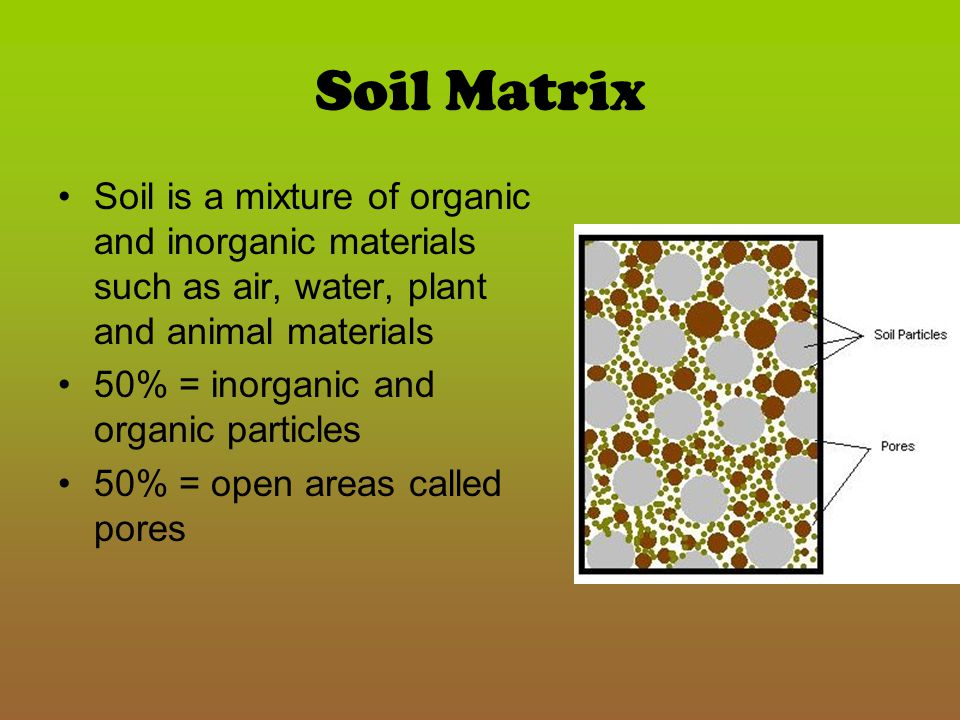 Soil Matrix Soil is a mixture of organic and inorganic materials such as air, water, plant and animal materials.