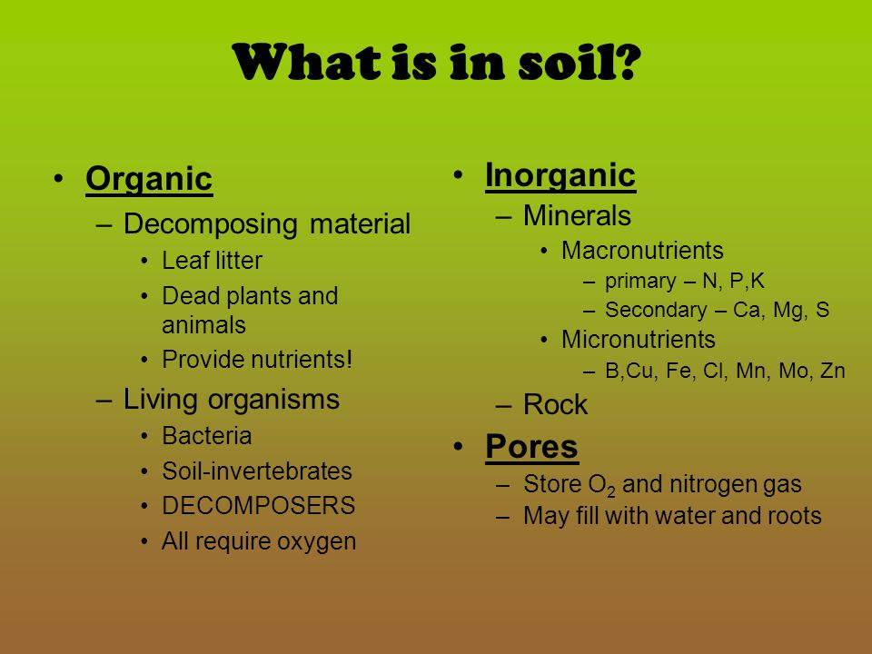 What is in soil Organic Inorganic Pores Decomposing material Minerals