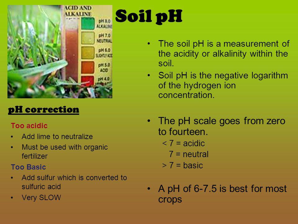 Soil pH The pH scale goes from zero to fourteen. pH correction