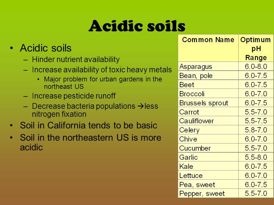 Acidic soils Acidic soils Soil in California tends to be basic